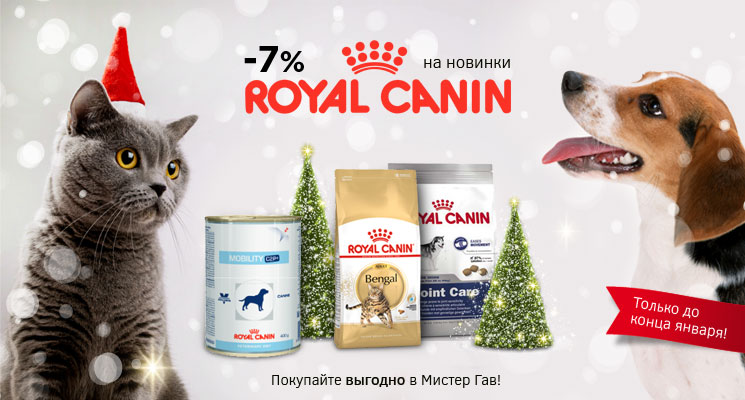 Новинки кормов Royal Canin